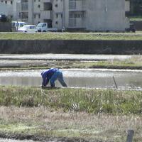 2007/02/11~03/18  農村再生支援のサムネイル
