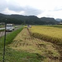 2016/10/10~11 大楠米稲刈りのサムネイル