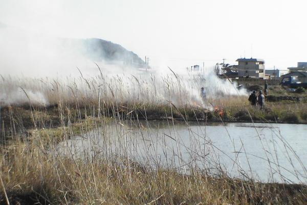 2007/02/11~03/18 こしき島耕作放棄地再生②