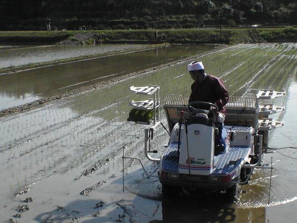 2007/02/11~03/18 こしき島耕作放棄地再生③のサムネイル