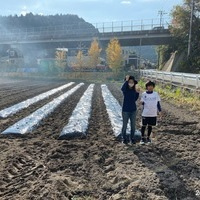 2019/12/01 楽農人宇美圃場にカノコユリ植付のサムネイル