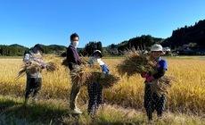 2020/11/09 大楠農産へ東京から農業体験