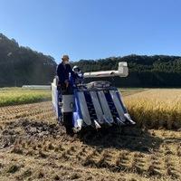 2020/11/09 大楠農産へ東京から農業体験のサムネイル