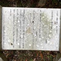 2020/01/16 史跡観世音寺の筑紫綿のルーツのサムネイル
