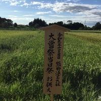 2019/09/12~14 川越V社のきぬむすめのサムネイル