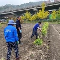 2020/11/07 東京から収穫体験のサムネイル