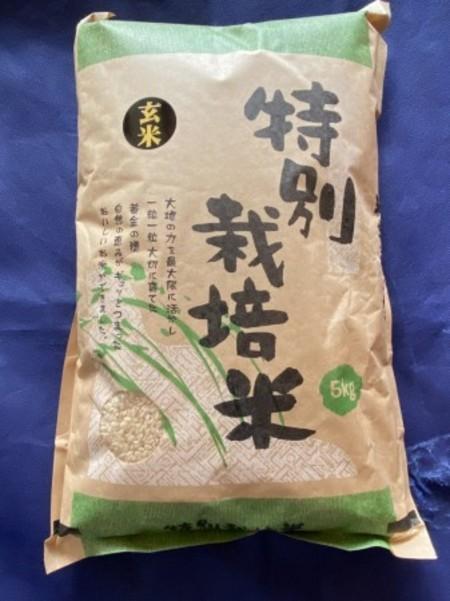 大楠あきほなみ 特別栽培米 玄米 5㎏