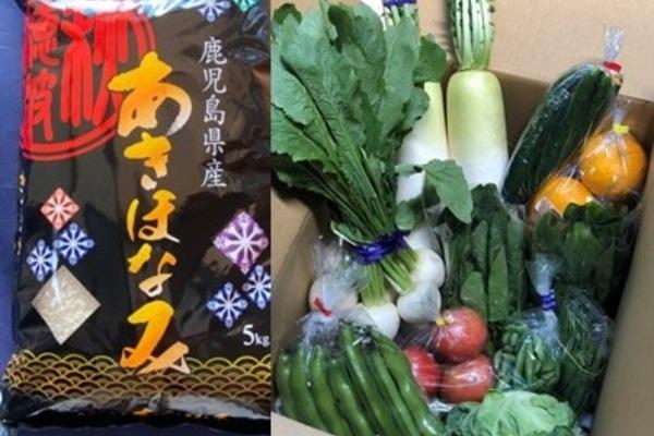 季節の野菜 10000円パック 「野菜とお米のset」